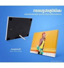 Aluminum picture frame With plastic frames